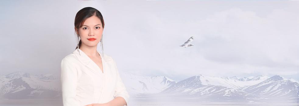 陈莹banner图片